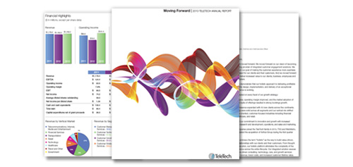 TeleTech 2013 Annual Report